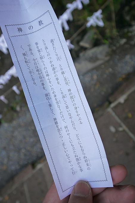 P1130315.jpg